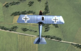 Pfalz D.III overhead (Rise of Flight)