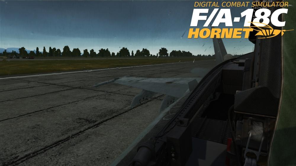 Hornet-rain.jpg