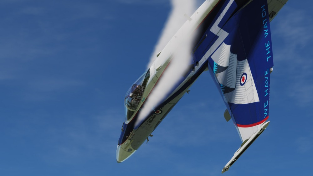 CF-18-NORAD60-06
