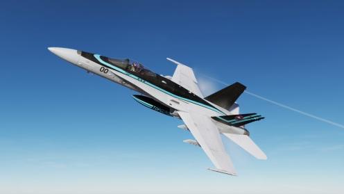 TG2-Hornet02