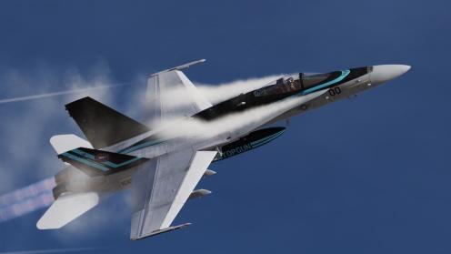 TG2-Hornet04