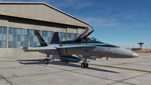 TG2-Hornet2-02
